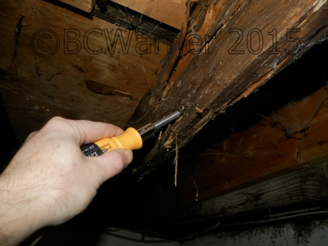 Ancillary inspections